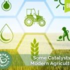 Some Catalysts in Modern Agriculture
