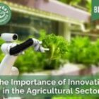 The Importance of Innovation in the Agricultural Sector