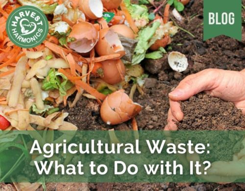 Agricultural Waste: What to Do with It?